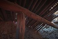 Sycamore ruin, AZ