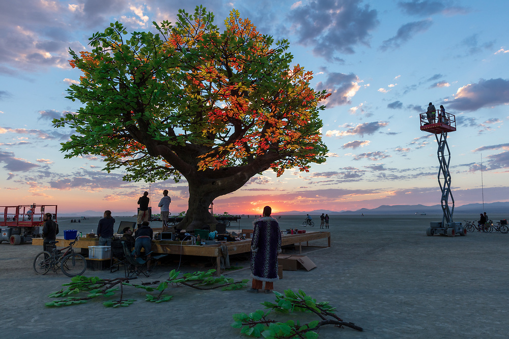 """The Tree of Ténéré builders pause for a brief moment to watch the sunrise. The Tree of Ténéré by: Alexander Green, Zachary Smith, and Patrick Deegan from: San Francisco, CA year: 2017<br /> <br /> An enormous lifelike tree, Ténéré offers shade to wanderers, adventure to climbers, and transcendent community to those gathered beneath its 15,000 LED leaves. Like its namesake – considered the most isolated tree on Earth until its destruction in 1973 – Ténéré serves as a place of refuge and ritual for desert wanderers. Standing more than three stories tall, it beckons to passersby with the promise of shade and adventure, conjuring spontaneous communities out of desert sand and sun. At night, LEDs hidden within each leaf begin to glow. The 15,000 leaves form a dome-shaped """"canvas of light"""" that towers over the playa, spanning more than a thousand square feet. Participants lying under the tree experience sublime light shows set to ambient music or live performance. And they directly influence the canopy lights through their sounds and biorhythms, creating moments of transcendent oneness with each other and with nature. URL: https://www.treeoftenere.com Contact: contact.tenere@gmail.com"""