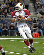 Arizona Cardinals quarterback Matt Leinart (7) drops back to pass against St. Louis at the Edward Jones Dome in St. Louis, Missouri, December 3, 2006.  The Cardinals beat the Rams 34-20.<br />