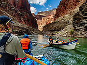 Day 11 of 16 days rafting 226 miles down the Colorado River in Grand Canyon National Park, Arizona, USA. For this photo's licensing options, please inquire at PhotoSeek.com.