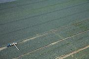 Nederland, Noord-Holland, Schermer, 14-07-2008; velden met  kool (rode, witte) in polder de Schermer, de kool wordt met de hand geoogst en dan getransporteerd, via een  lppende band naar de kar achter de trekker met daarop grote kooien /manden; trekker, transportband, seizoensarbeid, mechanisatie.kleur, landschaps abstractie, mondriaan. .luchtfoto (toeslag); aerial photo (additional fee required); .foto Siebe Swart / photo Siebe Swart