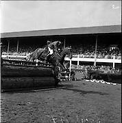 """05/08/1960<br /> 05/08/1960<br /> 05 August 1960<br /> R.D.S Horse Show Dublin (Friday). Aga Khan Trophy. Jorge Lucardi of Argentina on """"Stromboli""""."""