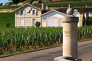 The entrance to Chateau Pavie 1er premier first Grand Cru Classe (1GCC), a stone gate post with the name carved, and the chateau Saint Emilion Bordeaux Gironde Aquitaine France