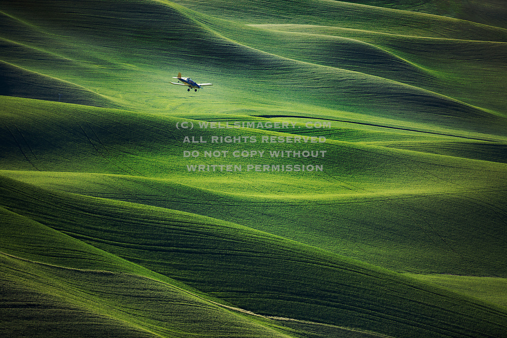 Image of a crop duster spraying the wheatfields in the Palouse, eastern Washington, Pacific Northwest by Randy Wells