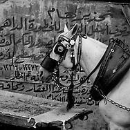 Egypt. Cairo : SALIBA area , islamic Cairo