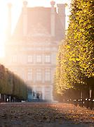 Jardin des Tuileries at the Musee du Louvre, Paris, France