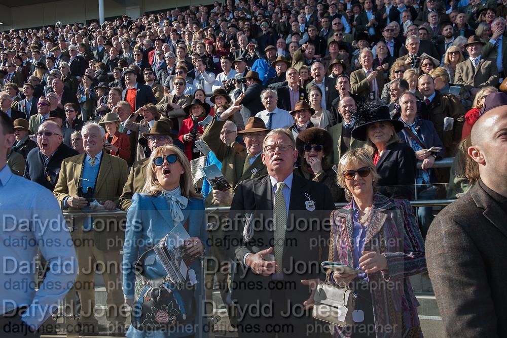 14.10 RACE, Cheltenham races,  Ladies Day, Wednesday 15 March 2017