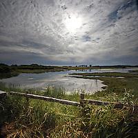 Big skies at the riverbank, Newtown, Isle of Wight