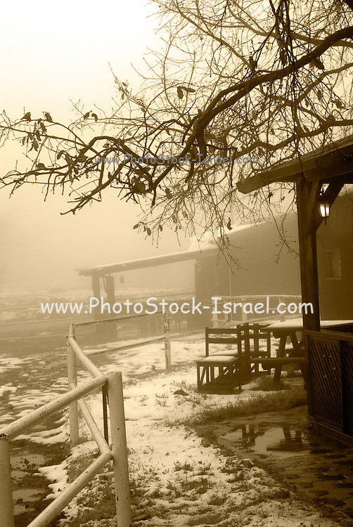 wooden cabin in the snow, Sepia