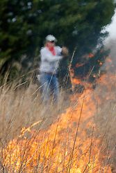 Volunteer and fire professionals during controlled burn on Wilt's Prairie, a Blackland Prairie remnant near Ennis, Texas, south of Dallas. Texas, USA.