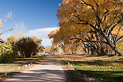Entry to Los Luceros with fall cottonwoods, New Mexico<br />