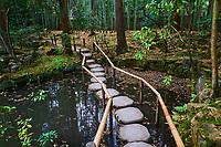 Japon, île de Honshu, région de Kansaï, Kyoto, temple Tenju-an  // Japan, Honshu island, Kansai region, Kyoto, Tenju-an temple
