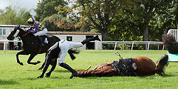 Harry Skelton takes a fall on Peter The Mayo Man in the bestofbritishbeer.co.uk Handicap Chase at Worcester Racecourse, Worcester.