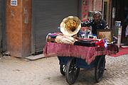street vendor with a wagon, Istanbul, Turkey