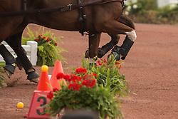 Glenn Geerts, (BEL), Antonio, Ozora Rangos, Red, Scampolo 49, Watapatja - Driving Cones - Alltech FEI World Equestrian Games™ 2014 - Normandy, France.<br /> © Hippo Foto Team - Dirk Caremans<br /> 07/09/14