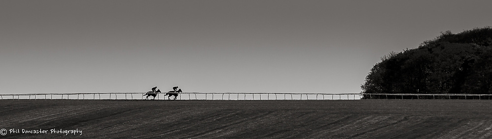 View of Long Hill Gallops, Newmarket