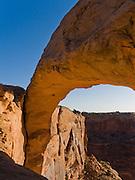 Mesa Arch bounces golden light at sunrise in Canyonlands National Park, Utah, USA.