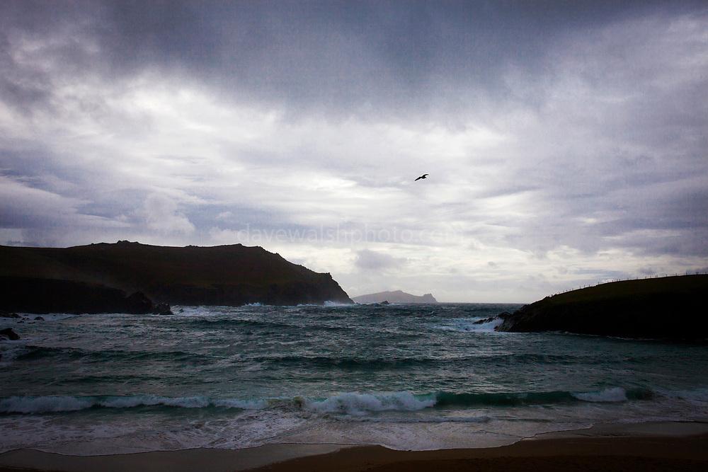 Clogher Strand, Dunquin, Dingle Peninsula, Kerry Ireland