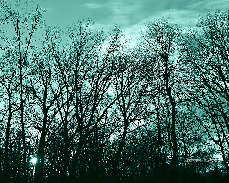 """I captured this nature portrait in my backyard on March 8th, 2017. On this day, I had a new lens that I was testing it. I originally captured this scene in color, but decided to convert it to black and white due to a lack of colors in the sky. I chose this split-toning color because it gave the scene an eerie appearance. I wanted to capture the outlines of the trees because creates great contrast with the sky and the sun, as well as adding random patterns and lines. I also like how the sun was subtly shining through the tree line since its a source of light surrounded by a dark subject.<br /> <br /> Printed on Hahnemühle German Etching paper. Limited to 150 productions per size.<br /> <br /> Framed prints are available in 20"""" x 16"""", 30"""" x 24"""", 40"""" x 30"""", and 50"""" x 40"""" sizes."""
