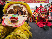 """19 FEBRUARY 2015 - BANGKOK, THAILAND: Lion dancers take a break between performances for Chinese New Year on Yaowarat Road in Bangkok. 2015 is the Year of Goat in the Chinese zodiac. The Goat is the eighth sign in Chinese astrology and """"8"""" is considered to be a lucky number. It symbolizes wisdom, fortune and prosperity. Ethnic Chinese make up nearly 15% of the Thai population. Chinese New Year (also called Tet or Lunar New Year) is widely celebrated in Thailand, especially in urban areas that have large Chinese populations.    PHOTO BY JACK KURTZ"""