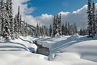 Fresh snow blankets Callaghan Country, near Whistler, BC Canada
