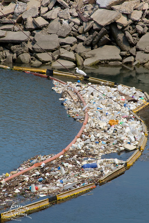 Plastic debris and other garbage collecting in a boom on the Los Cerritos Channel (a tributary of the San Gabriel River), Long Beach, Los Angeles County, California, USA