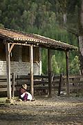 Local woman in farm yard, Ecuador, South America