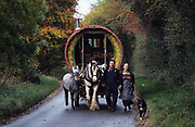Leslie and Edna lead Sam their horse pulling a roundtop wagon down a country lane, with their dog Lassie at their side. Coming back from Stow-on-Wold horse fair, Costwolds, England October 1996. ..Roma Gypsies left Rajasthan in India a thousand years ago, in the ninth and tenth centuries. They were pushed west by the Ottoman Muslim Empire as it moved through Persia towards the frontiers of Europe. They entered Europe in the foutrteenth century and were slaves in Romania and Moldavia until the mid 1850s. There are about 15 million Roma gypries in the world, about 12 million who live in Europe. they are Europe's largest ethnic minority. They have rich traditions and culture, their own language. They are renowned for their prowess in music and dance; they are also skilled craftsman, metal roofmakers, silver and goldsmiths. Their traveling and nomadic lifestyle which grew from a necessity to find work, and because they were often moved on from one place to the next, has given them both a liberty but also marks them as different and they are often feared by sedentary peoples, who label and scapegoat them. They are hardy survivors and live in the brunt of racism and prejudice, often marginalised, living in poverty, without proper human rights afforded to them..