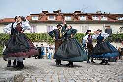 Members of folklore group during the Old Vine harvest.Modra kavcina or Bleu de Cologne is more than 400 years old and it is listed in the Guinness Book of Records as the oldest vine in the world still producing fruit. Pictured on 22nd of September in Maribor, Slovenia.  Photo by Milos Vujinovic / Sportida