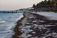 Puerto Morelos, Mexico. (Photo by Robert Caplin)