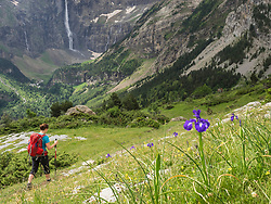 W 46 hiking in the High Pyrenees, France, on a single trail near Cirque de Gavarnie, which is a cirque in the central Pyrenees, Gavarnie, Departement Hautes-Pyrenees, France.