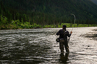 A fly fisherman fights a feisty rainbow trout on the Madison River in Montana.