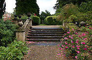 Rosa 'Cerise Bouquet' growing near old stone stairs and stone urns at Newby Hall, Ripon, North Yorkshire, UK