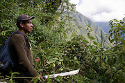 William Nauray surveys the view trying to locate the easiest way through a dense section of jungle in the Andes