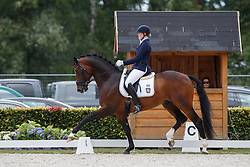 Rüscher Claudia, GER, Baccardi<br /> Longines FEI/WBFSH World Breeding Dressage Championships for Young Horses - Ermelo 2017<br /> © Hippo Foto - Dirk Caremans<br /> 04/08/2017
