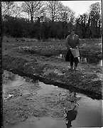 11/03/1959<br /> 03/11/1959<br /> 11 March 1959<br /> Fanure Fish Farm, Roscrea, Co. Tipperary. The farm was set up in the early 1960's to farm trout. Image shows feeding young trout by hand at one of the ponds on the farm.