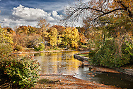 Quiet bend of the Fox River in autumn.  This is away from the main river chanel around Island Park in Geneva, IL.