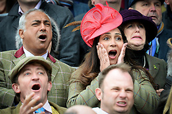 Racegoers react watching the action from the Albert Bartlett Novices' Hurdle during Gold Cup Day of the 2017 Cheltenham Festival at Cheltenham Racecourse.