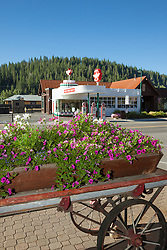 """""""Flowers in Downtown Truckee 3"""" - These flowers in an old wagon were photographed along commercial row in historic Downtown Truckee, California. They Flying A can be seen in the background."""