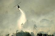 6 May 2009 - Santa Barbara, CA -  Heavy winds drive the Jesusita fire as it burns homes in the foothills of Santa Barbara, California. Photo Credit: Rod Rolle/Sipa Press,  21 August 2009-Santa Barbara, CA:
