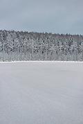 Silent morning over frozen nameless lake and surrounding forests on snowy winter day in Vidzeme, near Nītaure, Vidzeme, Latvia Ⓒ Davis Ulands   davisulands.com