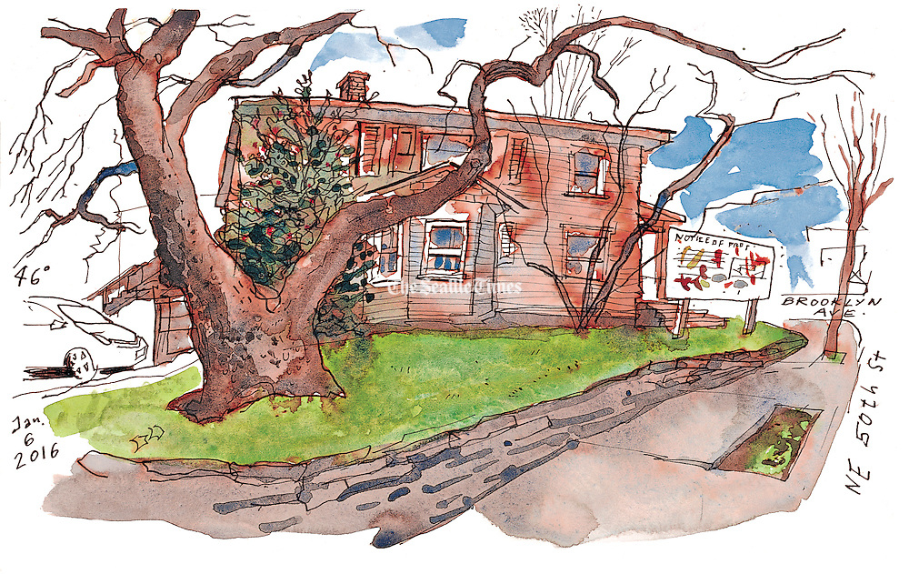 Assumptions that the trees of this property would be cut were wrong. Plans filed with the city and other public records indicate that the tall beech tree in front of the house will be preserved. (Gabriel Campanario / The Seattle Times)
