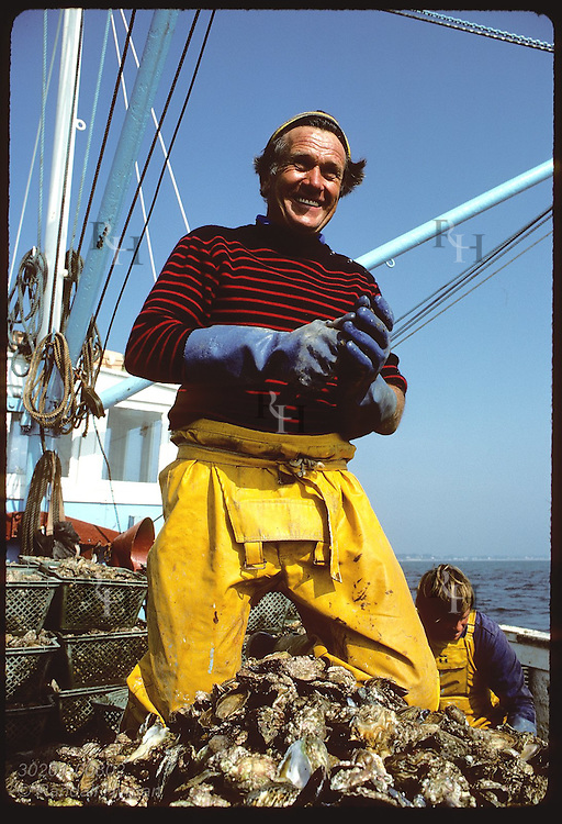 Captain Pierre Dano savors European flat oyster; Le Loch ship's mission is to save flat oyster. France