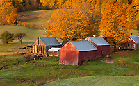 Early morning light on the Jenne Farm in South Woodstock, Vermont.