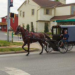 Intercourse, PA, USA - June 17, 2012: An Amish girl rides in a buggy in Intercourse, PA.