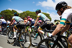 Elena Pirrone (ITA) in the bunch at Deakin University Elite Women Cadel Evans Road Race 2019, a 113 km road race starting and finishing in Geelong, Australia on January 26, 2019. Photo by Sean Robinson/velofocus.com