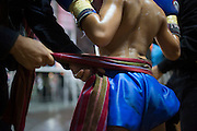 Jan 24, 2014 - Chiang Mai, Thailand - <br /> <br /> Nine Year Old Muay Thai Fighter<br /> <br /> A sash is wrapped around Focus' waist before his fight at the Thapae Muay Thai Stadium in Chiang Mai. PETCHFOGUS SITTHAHARNAEK, 9, aka Focus is the top fighter for his age and weight in Chiang Mai. He has begun fighting older, heavier opponents to continue to improve his skills. Fighters are typically paid 1000 baht (0) per fight. <br /> ©Exclusivepix