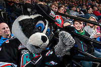KELOWNA, CANADA - FEBRUARY 8: Rocky Raccoon, the mascot of the Kelowna Rockets high fives a young fan on February 8, 2016 at Prospera Place in Kelowna, British Columbia, Canada.  (Photo by Marissa Baecker/Shoot the Breeze)  *** Local Caption *** Rocky Racoon;