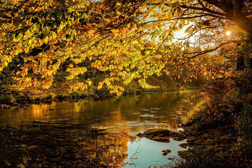 Evening sunlight falls on an idyllic river scene, lighting up the fall colors and reflections.