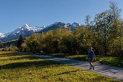 THEMENBILD - eine Frau beim spazieren mit Blick über eine Blumenwiese auf den Kitzsteinhorn Gletscher mit Schnee bedeckt, aufgenommen am 10. Mai 2017, Kaprun, Österreich // A woman walking with the view over a flower meadow on the Kitzsteinhorn glacier covered with snow at Kaprun, Austria on 2017/05/10. EXPA Pictures © 2017, PhotoCredit: EXPA/ JFK